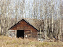 Alberta Farms en Boerderijen Stock Fotografie
