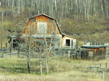 Alberta Farms and Ranches Royalty Free Stock Images