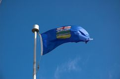 Alberta Flag. Flag of Alberta Canada blowing in the wind royalty free stock image