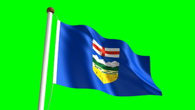 Alberta flag stock video