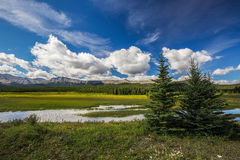 Alberta Foothill Country Stock Images