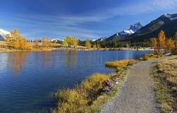 Alberta Foothills Autumn Landscape royaltyfria bilder