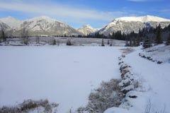 Alberta Foothills Winter Landscape Lizenzfreies Stockbild