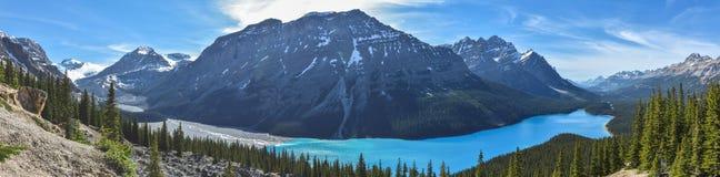 alberta jezioro Banff Canada lokalizować park narodowy peyto Obraz Royalty Free