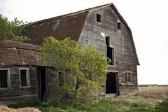 Alberta- oder Grasland-Bauernhof-Feld-alte Scheune stockfotografie