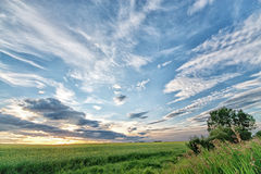 Alberta Prairie Sunset. Sunset on the prairie with a big sky and grass blowing in the wind Stock Images