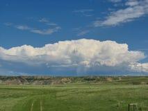 Alberta Prairies stockfotos