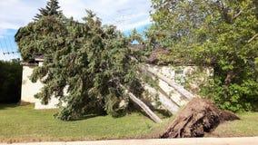 Alberta-Stürme Lizenzfreie Stockfotos