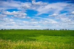 Alberta Wiejski krajobraz Obraz Royalty Free