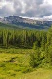 Alberta Wilderness Fotografía de archivo