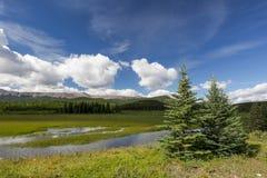 Alberta Wilderness Stock Photography