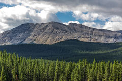 Alberta Wilderness Stock Image