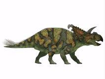 Albertaceratops на белизне иллюстрация вектора
