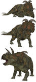 Albertaceratops. Lived in Canada. - isolated on white Royalty Free Stock Images