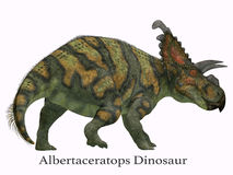 Albertaceratops Dinosaur Tail with Font Royalty Free Stock Photos