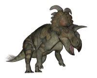 Albertaceratops dinosaurie - 3D framför vektor illustrationer