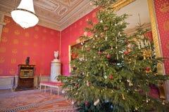 Albertina Audience Hall med julgranen Arkivbild