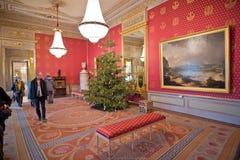 Albertina Audience Hall med julgranen Arkivbilder