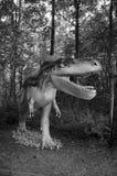 Albertosaurus. Model of dinosaur in Jurassic park in Poland. Stock Photography