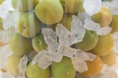 Albicocca giapponese con lo zucchero della roccia fotografie stock