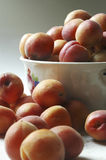 Albicocca nella cucina Fotografia Stock