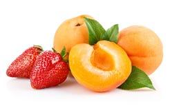 Albicocche arancio con due fragole isolate immagini stock