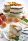 Albicocche del pesche e di fredda di Torta Immagine Stock