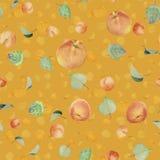 Albicocche, pesche e foglie - immagine di sfondo Fotografie Stock Libere da Diritti