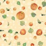 Albicocche, pesche e foglie - immagine di sfondo Immagine Stock