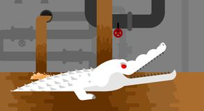 Albino Sewer alligator. Crocodile in sewerage. Predator animal. City legend. Vector illustration Stock Photos
