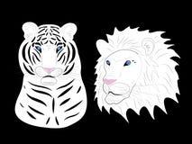 Albinos do tigre e do leão. ilustração royalty free