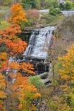 Albion tombe en automne Photo stock