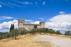 Albornoz fortress. Narni. Umbria. Italy. Stock Photos