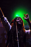 Alborosie band from Jamaica performs live at a concert Royalty Free Stock Images