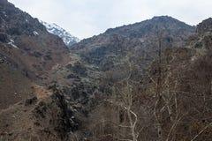 Alborz山,伊朗 库存图片