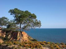 Albufeira nabrzeże Zdjęcia Stock