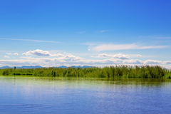 Albufera lake in Valencia in a sunny blue day Royalty Free Stock Photos