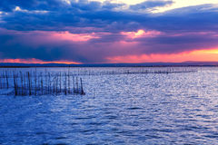 Albufera sunset lake park Valencia el saler Spain Royalty Free Stock Image