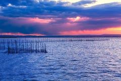 Albufera sunset lake park Valencia el saler Spain Royalty Free Stock Image