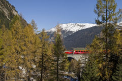 Albula train Royalty Free Stock Images