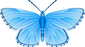 Albulina orbitulus蓝色蝴蝶传染媒介图象 免版税图库摄影