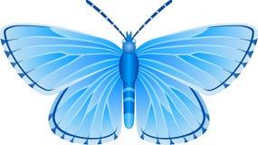Albulina-orbitulus blaues Schmetterlings-Vektorbild lizenzfreie stockfotografie