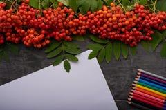 Album, cendre de montagne et crayons colorés sur la table Photos stock