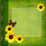 Album cover. Album green cover with sunflower and butterfly Royalty Free Stock Image
