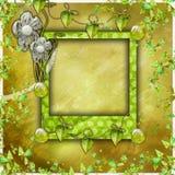 Album di foto verde dell'album Immagine Stock Libera da Diritti