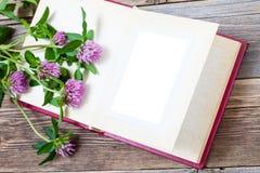 Album med öppen sidor och blomningväxt av släktet Trifolium Åtlöje upp Arkivfoton