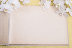 Album for photos and orchids Royalty Free Stock Image
