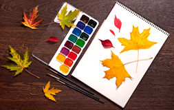 Album, watercolor paints, brushes and autumn leaves Stock Photo