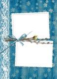 albumowa wiązki koronki wierzba Fotografia Royalty Free