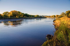 Albuquerque Bosque. The Rio Grande flows through the Albuquerque Bosque in the middle of the city. The cottonwood trees are in full autumn ccolor royalty free stock image